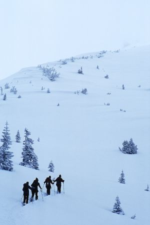 Skiers, Green Butte Ridge, Mount Shasta