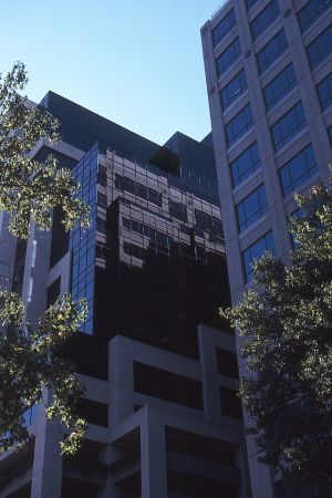 Highrise and Trees, Sacramento, California