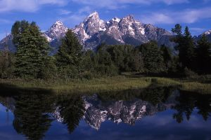 Reflections, Grand Teton National Park